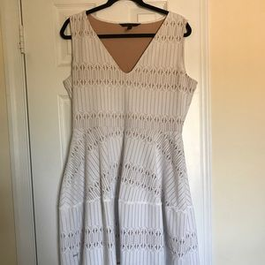 White BCBG stretch dress